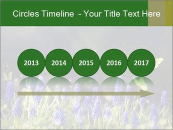Spring Meadow Full ofFlowers PowerPoint Template - Slide 29