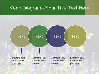 Spring Meadow Full ofFlowers PowerPoint Template - Slide 32