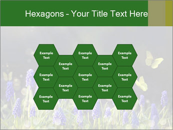 Spring Meadow Full ofFlowers PowerPoint Templates - Slide 44