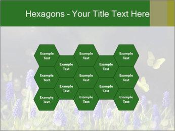 Spring Meadow Full ofFlowers PowerPoint Template - Slide 44