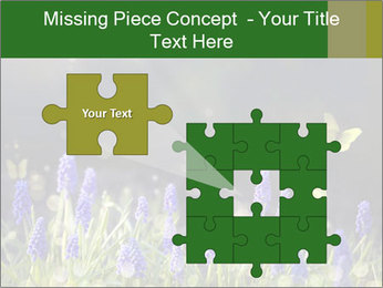 Spring Meadow Full ofFlowers PowerPoint Templates - Slide 45