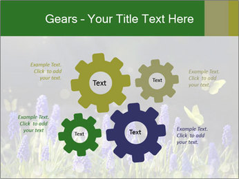 Spring Meadow Full ofFlowers PowerPoint Template - Slide 47