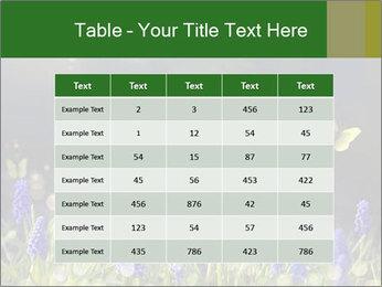 Spring Meadow Full ofFlowers PowerPoint Template - Slide 55