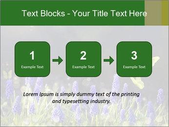 Spring Meadow Full ofFlowers PowerPoint Template - Slide 71