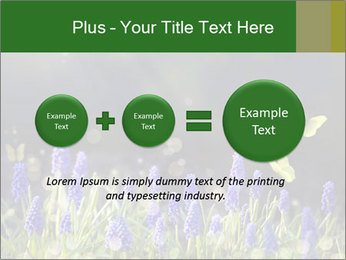 Spring Meadow Full ofFlowers PowerPoint Template - Slide 75