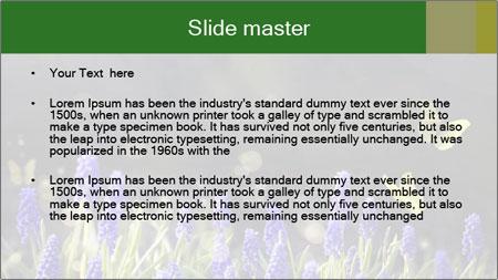 Spring Meadow Full ofFlowers PowerPoint Template - Slide 2