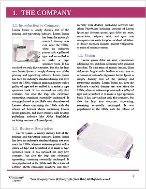 0000063281 Word Template - Page 3