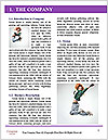 0000063288 Word Template - Page 3