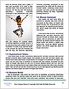 0000063292 Word Templates - Page 4