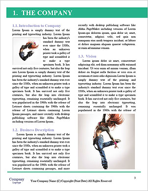 0000063293 Word Template - Page 3