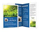 0000063308 Brochure Templates