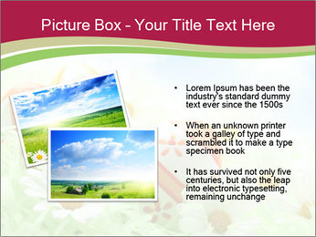 Easter Eggs and Camomiles PowerPoint Template - Slide 20