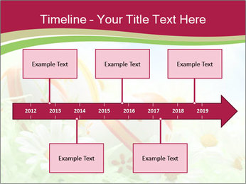 Easter Eggs and Camomiles PowerPoint Templates - Slide 28