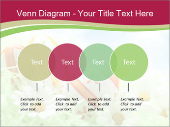 Easter Eggs and Camomiles PowerPoint Templates - Slide 32
