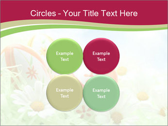 Easter Eggs and Camomiles PowerPoint Template - Slide 38
