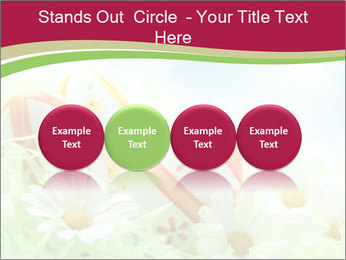 Easter Eggs and Camomiles PowerPoint Templates - Slide 76