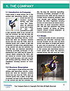 0000063323 Word Template - Page 3
