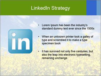 Ukrainian Field Landscape PowerPoint Template - Slide 12