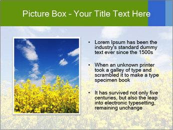 Ukrainian Field Landscape PowerPoint Template - Slide 13
