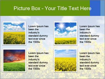 Ukrainian Field Landscape PowerPoint Template - Slide 14