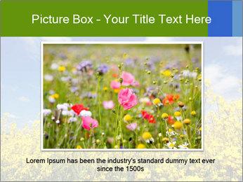 Ukrainian Field Landscape PowerPoint Template - Slide 15