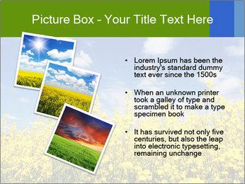 Ukrainian Field Landscape PowerPoint Templates - Slide 17