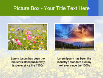 Ukrainian Field Landscape PowerPoint Template - Slide 18