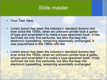 Ukrainian Field Landscape PowerPoint Template - Slide 2