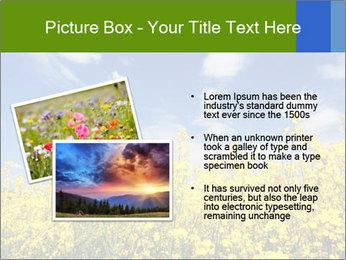 Ukrainian Field Landscape PowerPoint Template - Slide 20