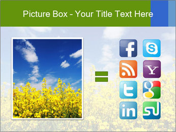 Ukrainian Field Landscape PowerPoint Template - Slide 21