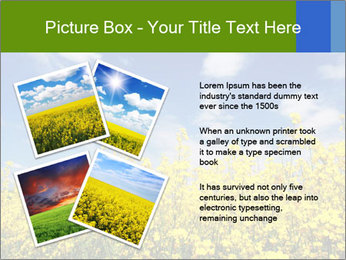 Ukrainian Field Landscape PowerPoint Template - Slide 23