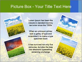 Ukrainian Field Landscape PowerPoint Template - Slide 24