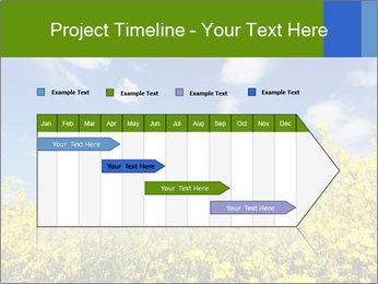 Ukrainian Field Landscape PowerPoint Template - Slide 25