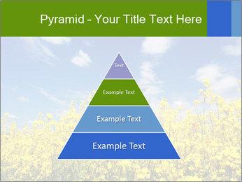 Ukrainian Field Landscape PowerPoint Templates - Slide 30