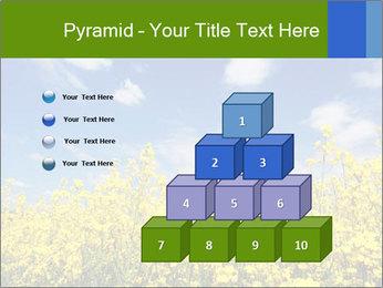 Ukrainian Field Landscape PowerPoint Template - Slide 31