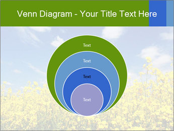 Ukrainian Field Landscape PowerPoint Template - Slide 34