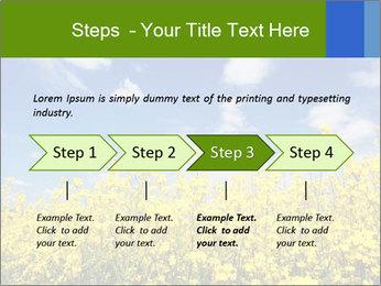 Ukrainian Field Landscape PowerPoint Template - Slide 4