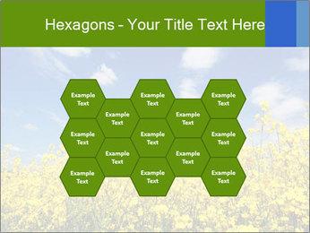 Ukrainian Field Landscape PowerPoint Template - Slide 44