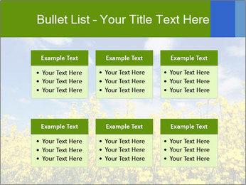 Ukrainian Field Landscape PowerPoint Template - Slide 56