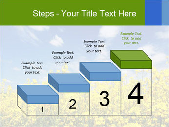 Ukrainian Field Landscape PowerPoint Template - Slide 64
