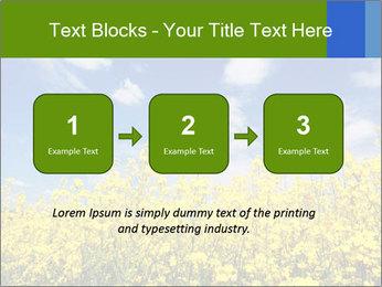 Ukrainian Field Landscape PowerPoint Template - Slide 71