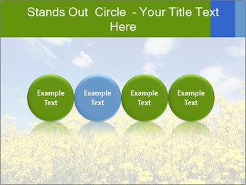Ukrainian Field Landscape PowerPoint Template - Slide 76