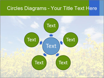 Ukrainian Field Landscape PowerPoint Template - Slide 78