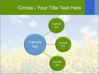 Ukrainian Field Landscape PowerPoint Template - Slide 79