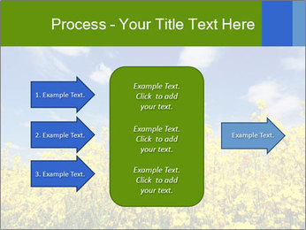 Ukrainian Field Landscape PowerPoint Template - Slide 85