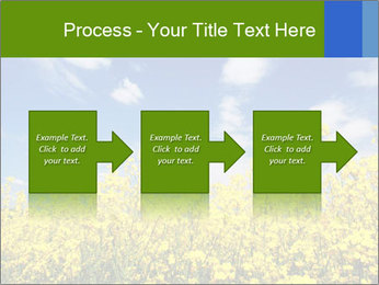 Ukrainian Field Landscape PowerPoint Template - Slide 88