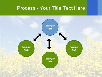 Ukrainian Field Landscape PowerPoint Template - Slide 91