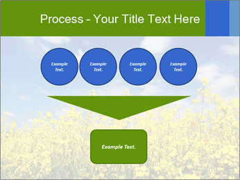Ukrainian Field Landscape PowerPoint Template - Slide 93