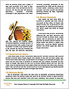 0000063331 Word Templates - Page 4