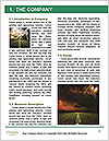 0000063333 Word Template - Page 3